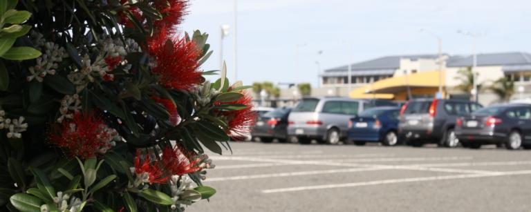 car parking at hawkes bay airport